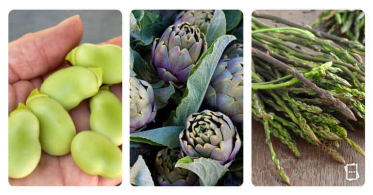 Verdura in regalo tra fava, carciofi e asparagi, ma solo con il coupon TIPS
